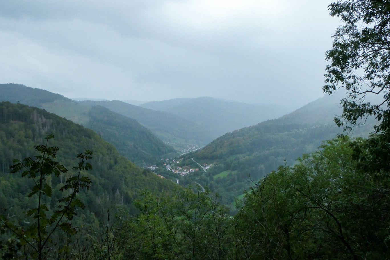 Deutschland Schwarzwald Hochschwarzwald Todtnauberg Todtnauer Wasserfall Ausblick Tal Nebel