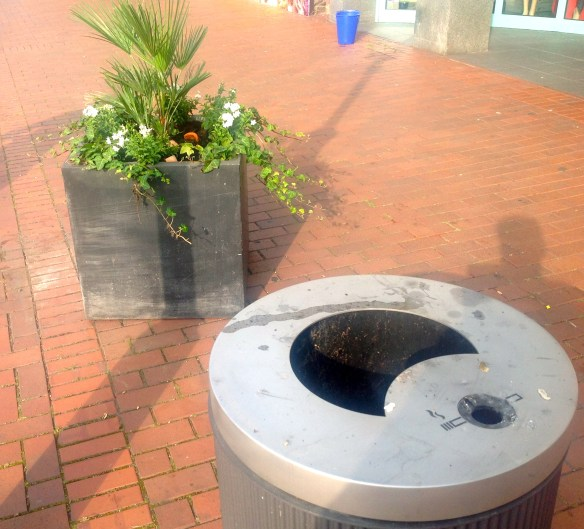 Kippen-Müll-Blumen-Kombi
