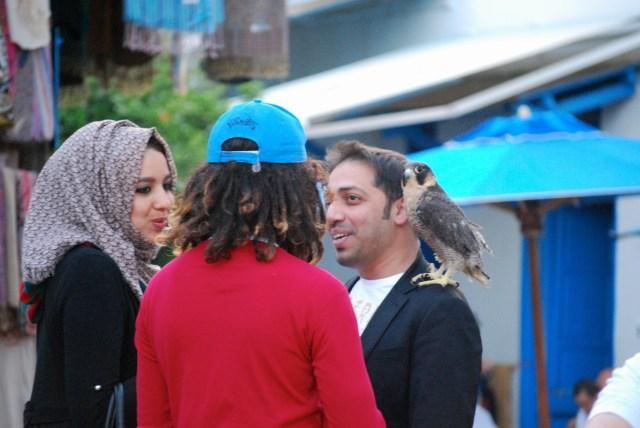 Exkursion nach Sidi Bou Said