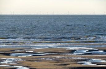 In der Ferne ein riesiger Windpark.