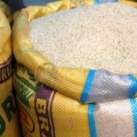Le Congo veut relancer la culture du riz pour réduire les importations coûteuses