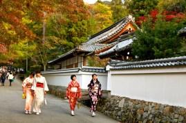 Kyoto interviews d'habitants Tokyo campagne japonaise geisha vie japonaise sushis école japonaise université des arts de tokyo chant au japon traditions modernité au japon japonais japonaise maquillage temple bouddhisme religion verdure magie beau japon incroyable interview d'une japonaise folie totale au japon truc de fou ouf japonais