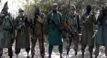 Many Killed, Vehicles, Houses Destroyed in Fresh Boko Haram Attack