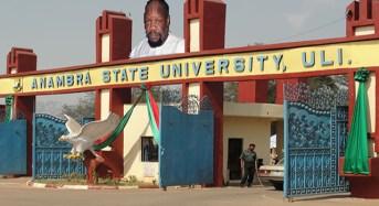 Gov Obi Names State University After Ojukwu