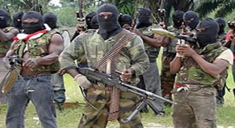 Boko Haram Attacks Borno Village, Kills 20, Rob Residents