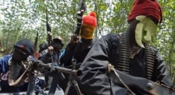 Local Hunters Re-capture Adamawa Town, Kill 75 Boko Haram Terrorists