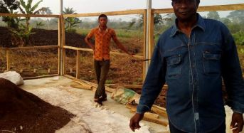 Ondo Is Blazing A Trail In Reviving Cocoa – Chair, Cocoa Revolution Project