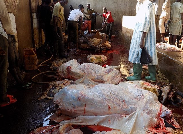 The carcasses of slaughtered cattle at the Sokoto Modern Abattoir. Photo credit Kolawole Talabi
