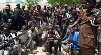Civilian JTF Arrests 17 Insurgents, Rescue 11-Year Old Girl
