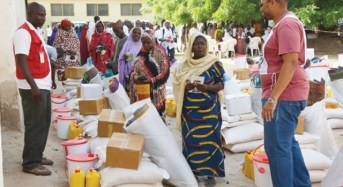 Qatar donates food items to Borno IDPs