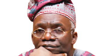 Falana Condemns Police Arrest Of Peace Corps Members