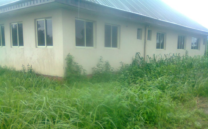 PHC building in Ughelli, Delta State overgrown with grass