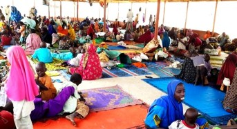Fleeing Boko Haram Insurgents Hiding In Borno Villages