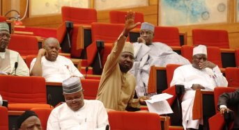 Senate Condemns Nigeria's Military Intervention In The Gambia