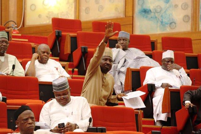 Senate Condemns Nigeria's Military Intervention In The Gambia