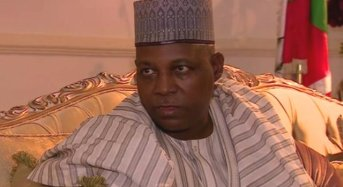 Why Borno Governor Attacked UNICEF, Others