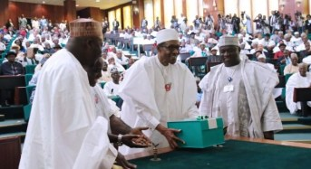 2017 Budget: Group Wants N/Assembly To Delete Over 500 Items