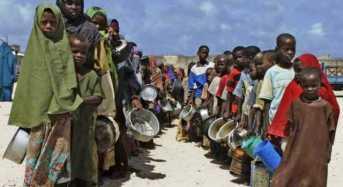 Famine Threatens 1.4 Million Children In Nigeria, 3 Other Countries