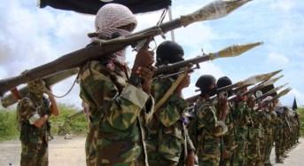 Al-Shabaab, Al-Qaeda Sponsor Boko Haram – US Army