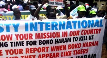 Civil Society Groups Disown Anti-Amnesty International Protests In Nigeria