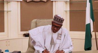 Buhari Appoints New NERC Chairman