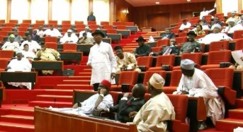 Senate Gives Osinbajo 2 Weeks To Submit Budgets Of Revenue Agencies