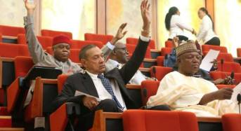 Senate Passes Customs And Excise Repeal And Re-Enactment Bill
