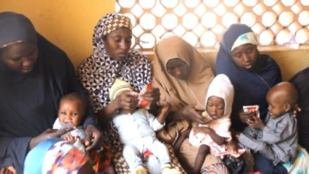 Mothers feeding their babies with RUTF in CMAM centre, Sharada, Kano State