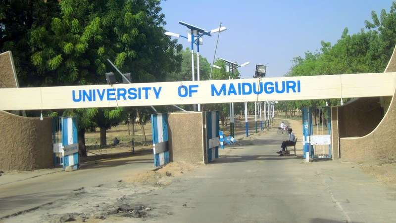Now 'at' UMTH... 48 corpses of UNIMAID staff, NNPC drivers, security personnel killed by Boko Haram