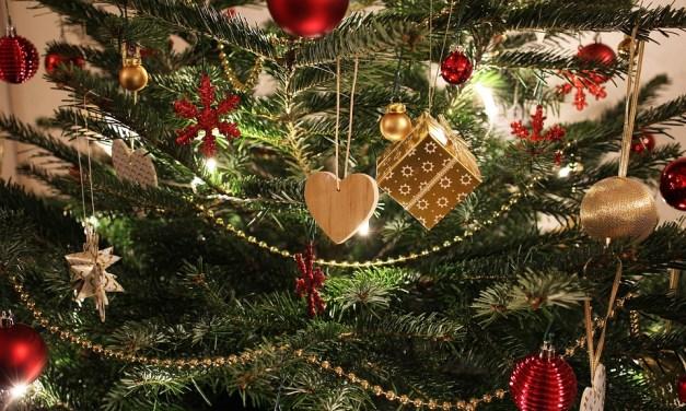 Des idées à profusion pour célébrer Noël