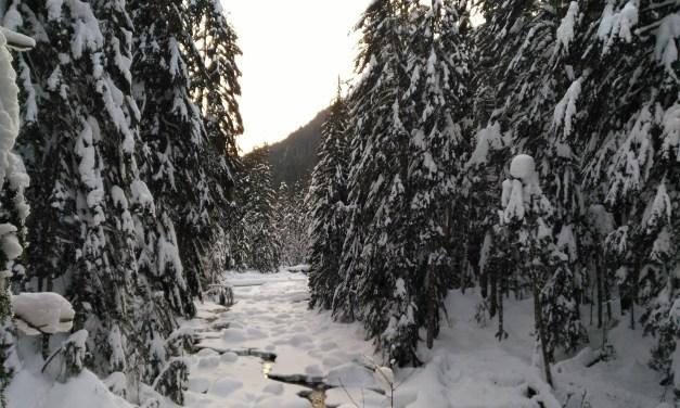 Franklin Falls: a perfect winter hike!
