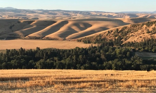 The hills of Walla Walla