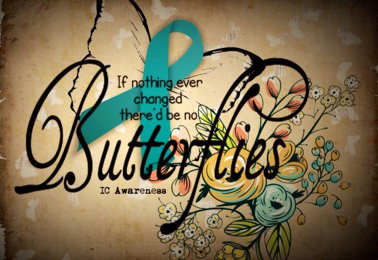 ic butterflies