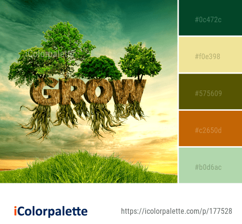 Color Palette Ideas from Tree Woody Plant Sky Image   iColorpalette