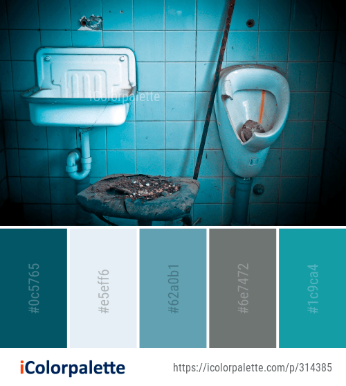 4 Bathroom Color Palette Ideas In 2021 Icolorpalette