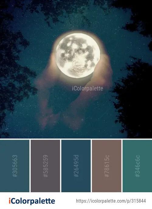 Moonlight Color : moonlight, color, Moonlight, Color, Palette, Ideas, IColorpalette