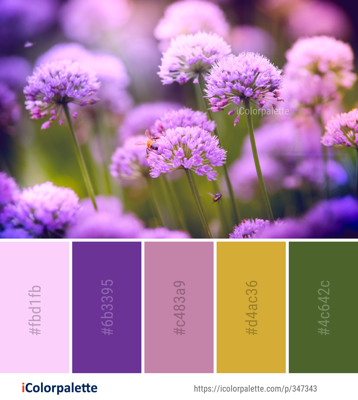 20753 Flower Color Palette Ideas In 2020 Icolorpalette
