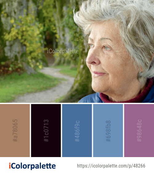 Color Palette ideas from 3245 Tree Images | iColorpalette