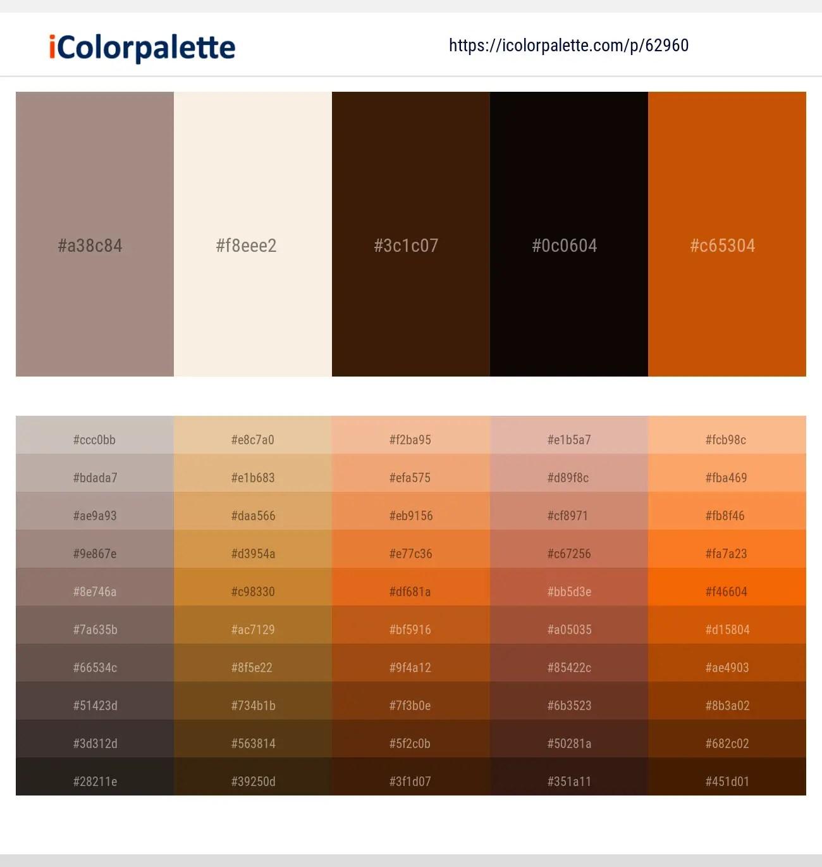 1 Color Palettes With Asphalt And Burnt Orange Color In 2020 Icolorpalette,Christina Anstead Tarek El Moussa Instagram