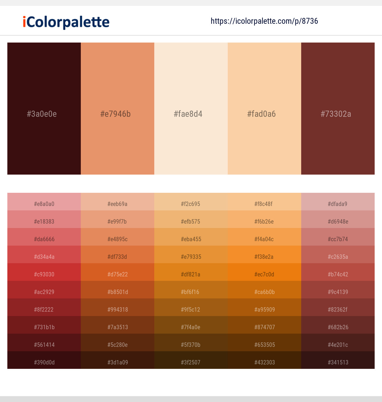 4 Color Palettes with Apricot And Nutmeg Color in 2019