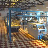 European Museum Forum escolhe Museu de Portimão para 1ª reunião de trabalho em 2018