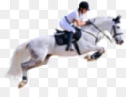 Horse Show jumping Equestrian Coloring book   horse riding png     PNG