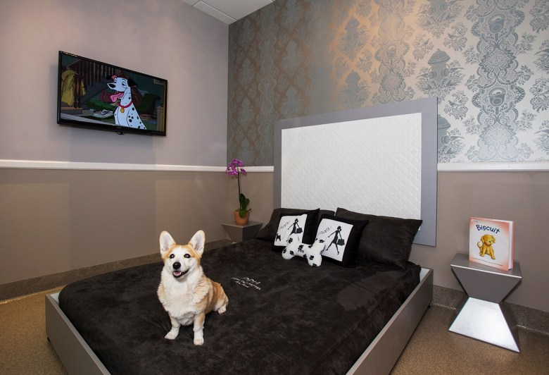 Posh Pet Hotels - Presidential Suite