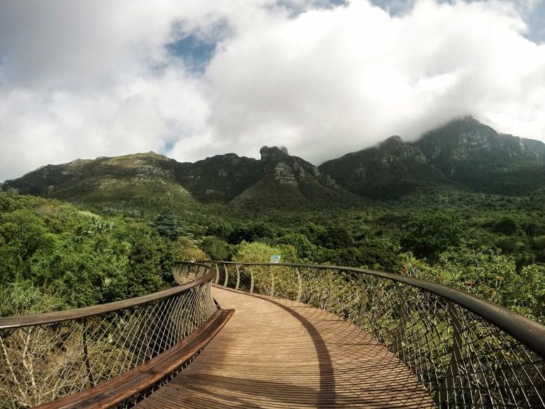 Kirstenbosch Botanical Garden in South Africa