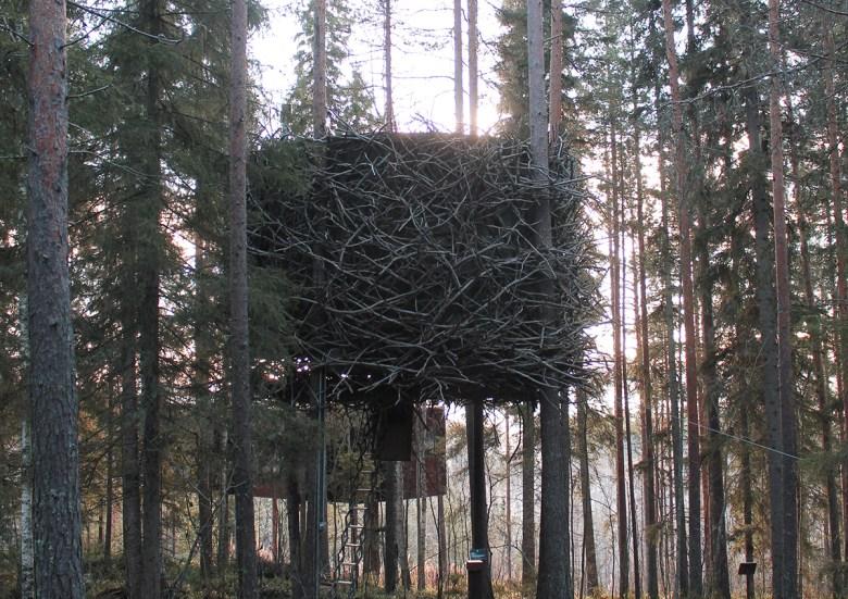The Birds nest treehouse hotel Sweden
