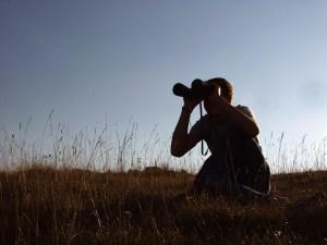 private investigator nyc surveillance