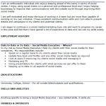 Social Media Executive CV Example