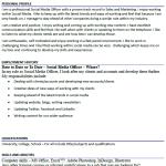 Social Media Officer CV Example