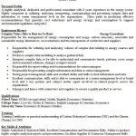 Energy Consultant CV Example