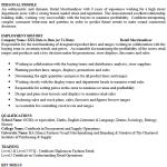 Merchandiser CV Example